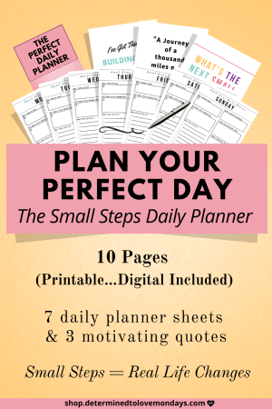 Small Steps Daily Planner
