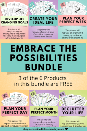 Embrace the Possibilities Life Planner Bundle