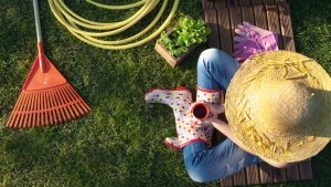 5 cosas que deberias de saber sobre un negocio de jardineria