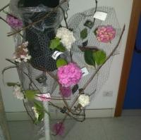 trento-20120622-00066