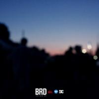 brd22