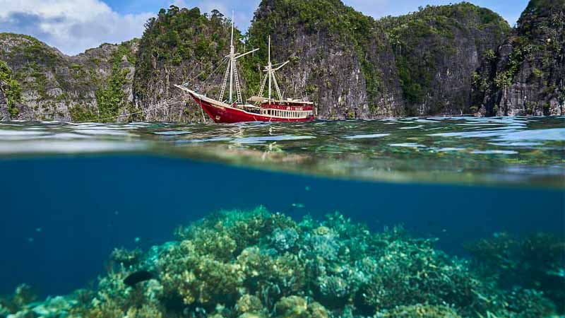 Irish Moss Seaweed - No Wildcrafting - Only Responsible Sea Moss Farming - www.detoxandcure.com - red boat moored in clear blue water with reef visible underneath off the shore of Krabi in Thailand with rocky cliffs falling straight down to the water. Trees are desperately hanging on to the cliffs and growing in any ledge they can find