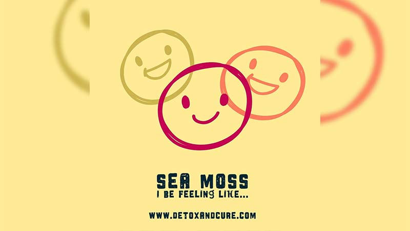 sea-moss-makes-me-feel-amazing-and-happy