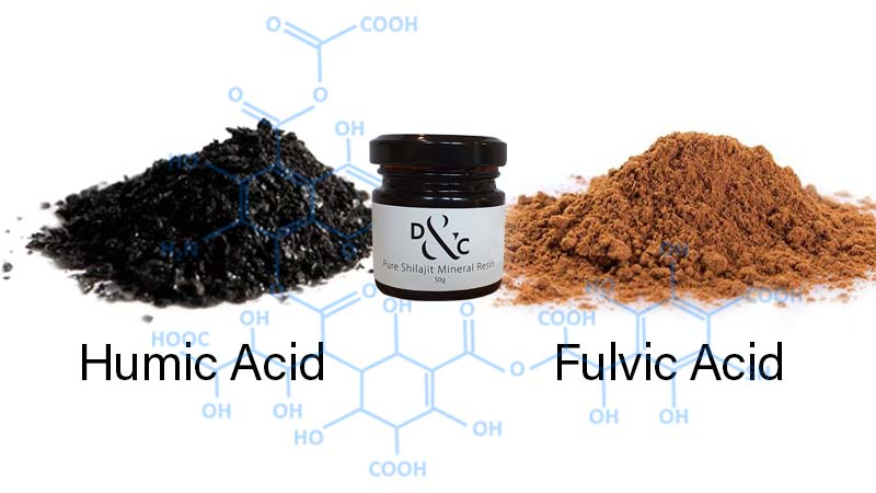 Shilajit jar 50g with a pile of fulvic acid and humic acid on a white background and the molecular structure for humic acid overlaid for illustration purposes