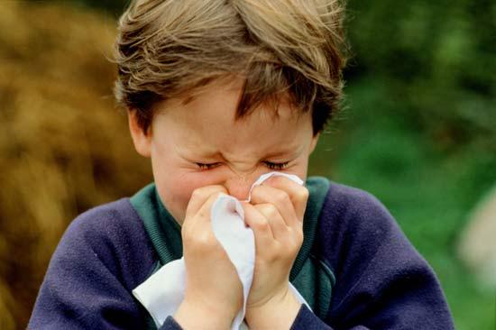 boySneeze