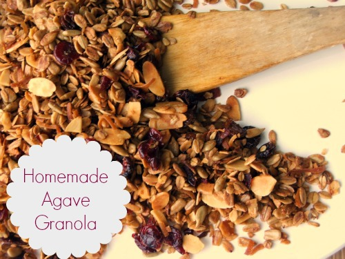 Home Made Granola – with Agave In The Raw Nectar™