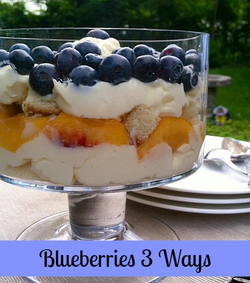Blueberries 3 Ways from detroitmommies.com