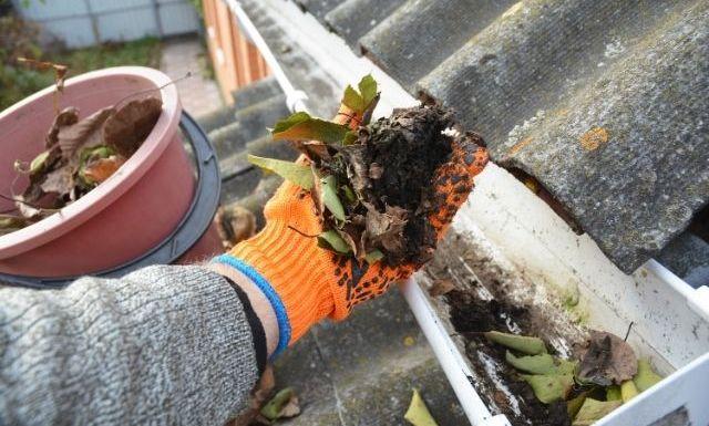 The Importance of Gutter Maintenance
