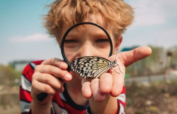 How to Instill a Love of the Outdoors in Your Kids