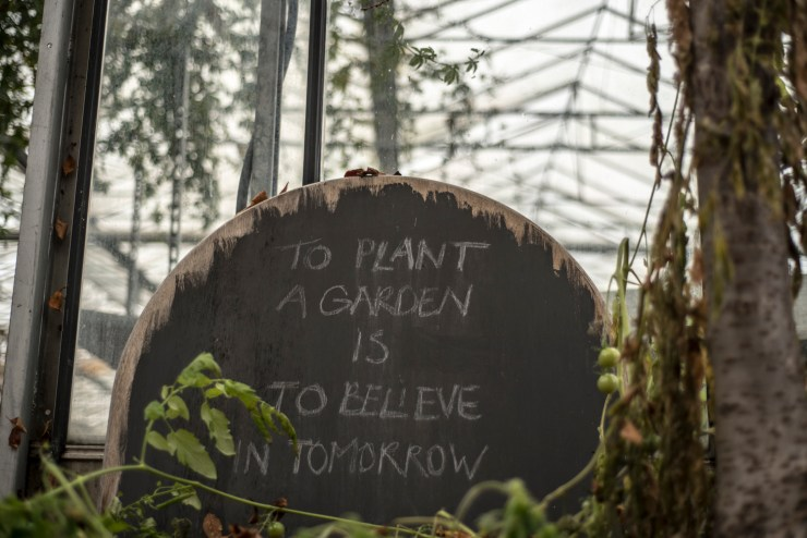 De Tuinkabouter: To plant garden is to believe in tomorrow
