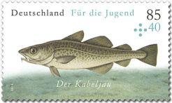 """Serie """"Für die Jugend"""" 2016: Salzwasserfische - Kabeljau"""
