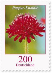 Briefmarke Deutschland Knautie