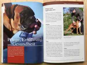 Deutscher Boxer Buch - Kapitel Pflege