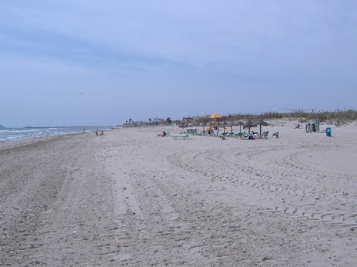 playa_mil_palmeras-02