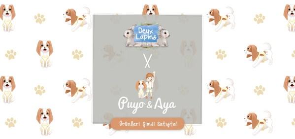 Puyo-Aya-Slider