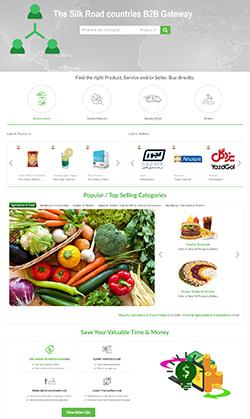B2B eCommerce Portal Designing Thumb