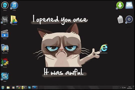 Grumpy Cat Opened Internet Explorer Once It was Awful Meme
