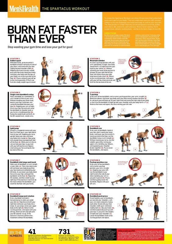 Check out this definitive guide to having the best weight loss workout plan for the gym. Learn how the spartacus and other fat burning workouts can give you health benefits. #wellness #exercise #healthylife #healthier #fitness #workouts #fitnessgoals #keepingfit