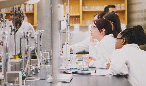 Best Chemical Engineering Schools