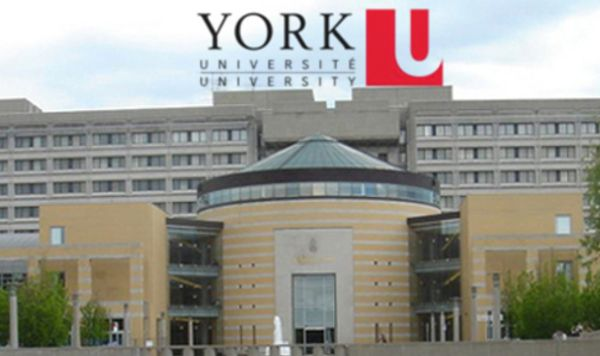 York University Canada Ranking Programs & Courses