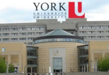 York University Canada Ranking, Programs & Courses