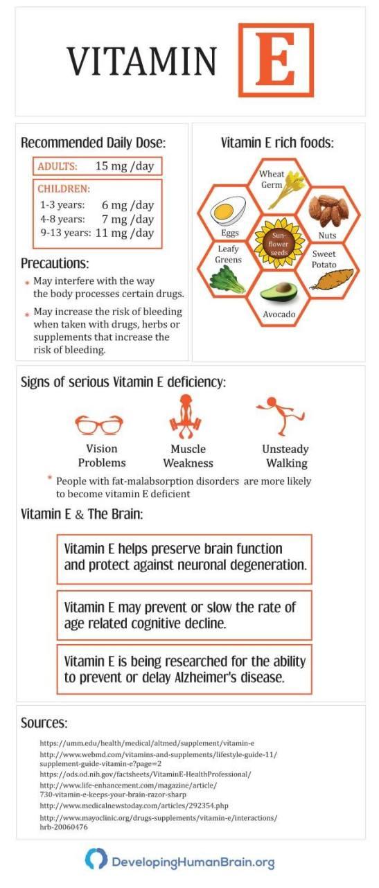 vitamin e infographic