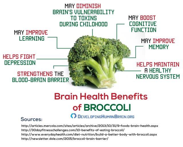 brain food broccoli