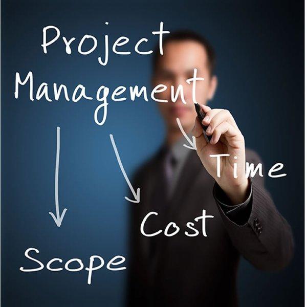 dip project management