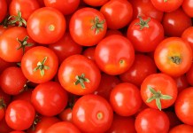 5 Manfaat Baik Tomat Bagi Kesehatan