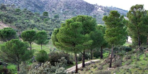 El Parque Natural Sierra de Andújar en Jaén