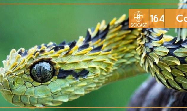 Scicast #164: Cobras
