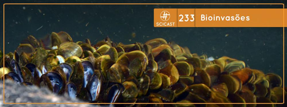 SciCast #233: Bioinvasões