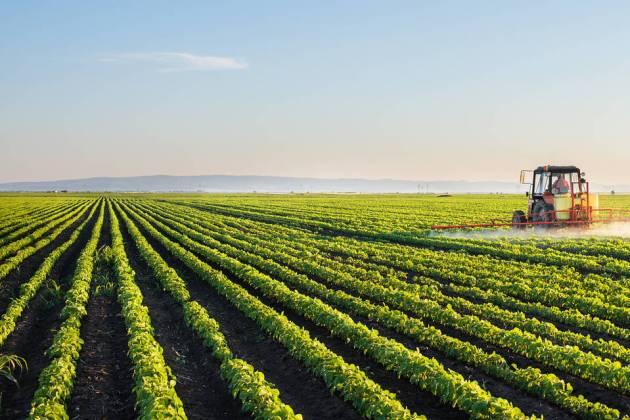 Fazendas da Califórnia podem ser uma silenciosa, mas considerável, fonte de poluição