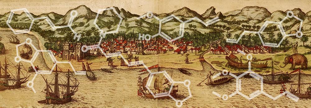 O papel das especiarias nas Grandes Navegações – parte 3/4: a busca por rotas alternativas no séc. XV