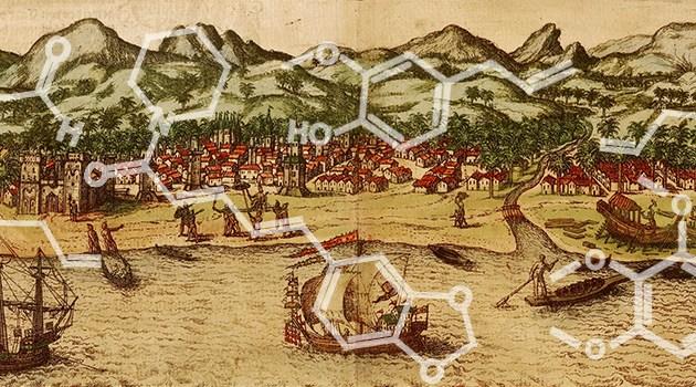 O papel das especiarias nas Grandes Navegações – parte 4/4: conflitos pelas especiarias nos séc. XVI e XVII