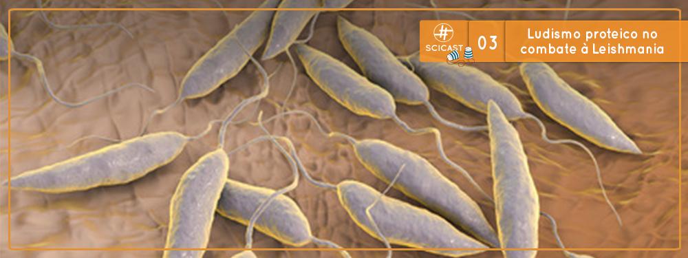 Ludismo proteico no combate à Leishmania (Ciência Sem Fio #03)