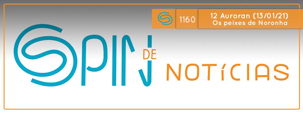 Imagens subaquáticas da ictiofauna de Fernando de Noronha – 12 Auroran (Spin #1160 – 13/01/20)