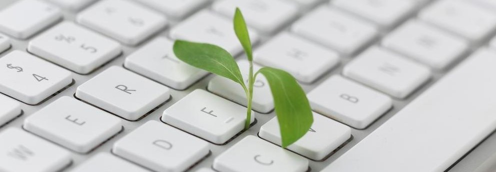 Computação natural: buscando inspiração nanatureza