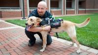 This Computerized Harness might be The canine Translator we now have Been waiting For