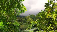 Costa Rica Is Now operating On 100% Renewable electrical energy