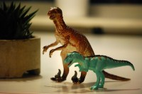 What came about To The Dinosaurs – the newest Google Fail