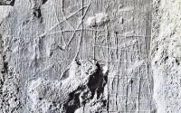 unique historical Sator-Rotas phrase-sq. revealed