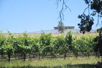 How Tesla's business Batteries Have modified the long run…For Winemakers?