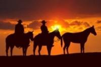 Texas Roundup: DrNow, provoke, Orbera, rise, HUVR, Microsoft