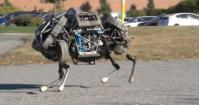 These Mechanical Cat Legs March Us toward The Robopocalypse