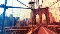 a long walk through Brooklyn With Collaborative Fund Founder Craig Shapiro