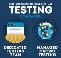 Crowdtesting: A Holistic method to device checking out [Infographic]