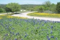 Tour of Texas: SXSW Recap, Houston Tech heart, M-information, Grok, U of H
