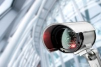 Lizard Squad hacked thousands of cameras to attack websites