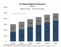 The Future of the Native Ad Business